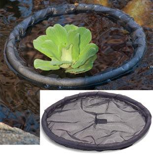 Floating Flora Ialand | Plant Protectors