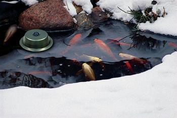 300-Watt Pond De-Icer | Winterizing Products